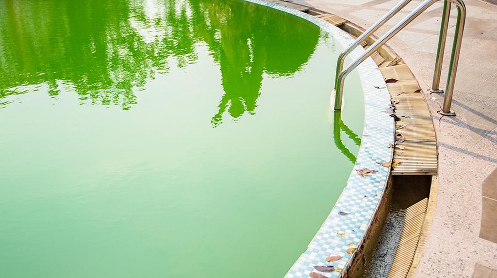 Água turva, não se enxerga o fundo mesmo após oxidação de choque e/ou com residual adequado de cloro.