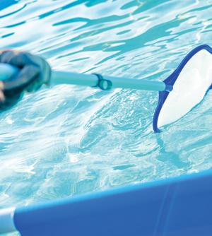 dengue na piscina